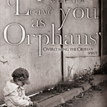 I Will Not Leave You As Orphans Book